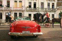 Obecność samochodów nie wyklucza transportu konnego