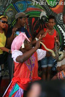 Taniec z żywym wężem
