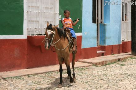 Koń popularny środek transportu - na nas zrobił wrażenie wiek jeźdźca