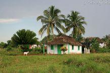 Jeden z wielu małych domków