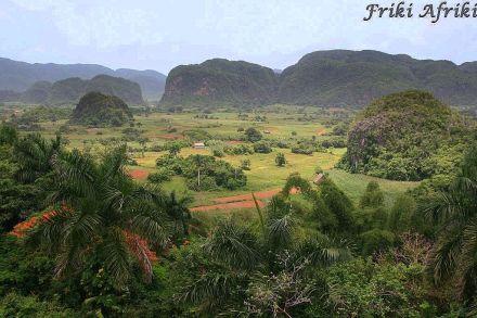 Widok na dolinę