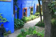 Patio, Casa Azul