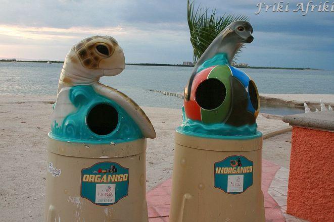 Żółw na odpady organiczne, foka na pozostałe - La Paz