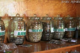 Apteka z ziołowymi medykamentami