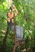 W dżungli są małpy ;-)